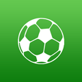 Amateur Soccer Coach 2